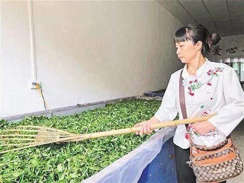 打工10年,创业10年 打工妹杨秀贵,全国女性创业之星!