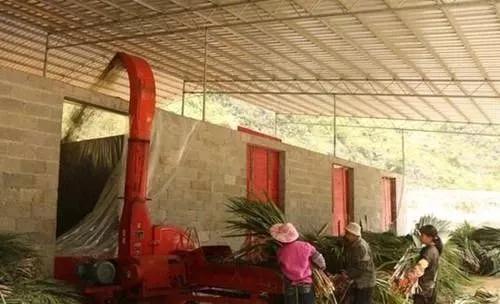 打工不如回农村创业,搞这些项目不愁市场!