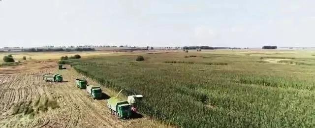 未来农村创业的2个项目,农民不妨考虑一下,不比在电子厂上班差