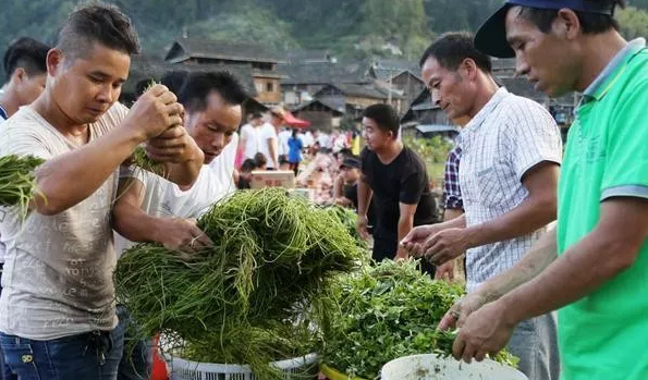 """如果打工累了就选择回农村创业,这几个创业点子,""""钱""""景很好!"""