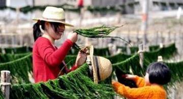 农村女人在家创业什么好,适合农村妇女11个创业项目